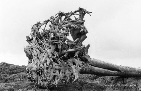 Drift Log