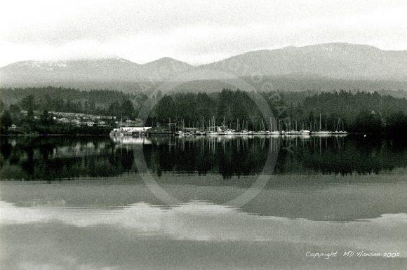 Reflections of Ladysmith