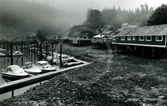 Telegraph Cove Cabins